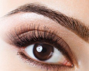 Eyes Brows and Lashes