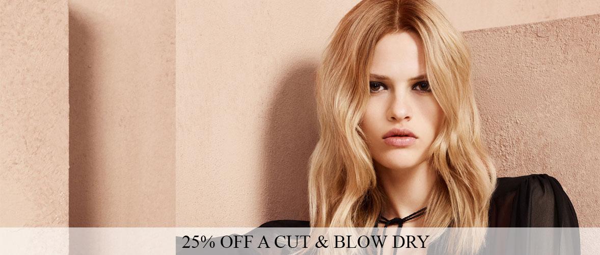 25% OFF a Cut & Blow Dry