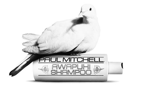 paul mitchell cruelty free products at melanie richards hair salon in peterborough